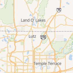 Land O Lakes Florida Map.Animal Health Center Of Land O Lakes Veterinarian In Land O