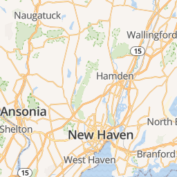 Home Veterinarian In New Haven Ct Veterinary Wellness Center Of New Haven Veterinary Wellness Center Of New Haven Veterinarian In New Haven Ct Us